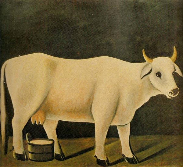 Белая корова на черном фоне