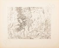 Artist: Kustodiev, Boris Mikhailovich : Лес осенью. Лист из альбома «Шестнадцать автолитографий»