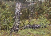 Artist: Tutunov, Andrey Andreevich : Березовый пень