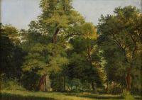 Artist: Kamenev, Lev Lvovich : Лесной пейзаж