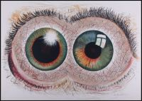 Artist: Viting, Nikolay Iosifovich : Взгляд художника