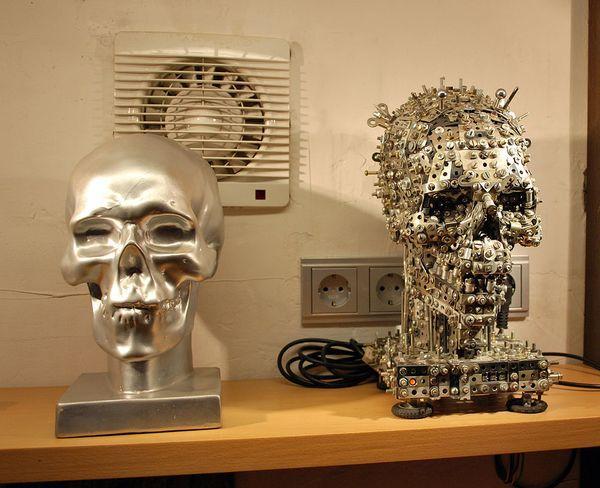 Коллекционер со скульптурой Никиты Гашунина — механическим черепом с электроприводом