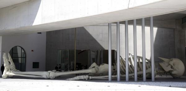 Скульптура итальянского художника Джино Де Доминичиса в виде 24-метрового скелета «улеглась» рядом с главным входом в музей
