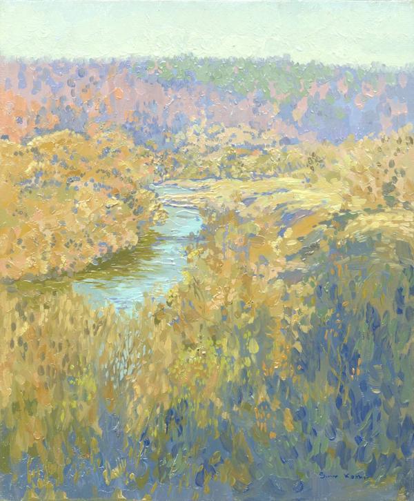 Река Серёна. 2010