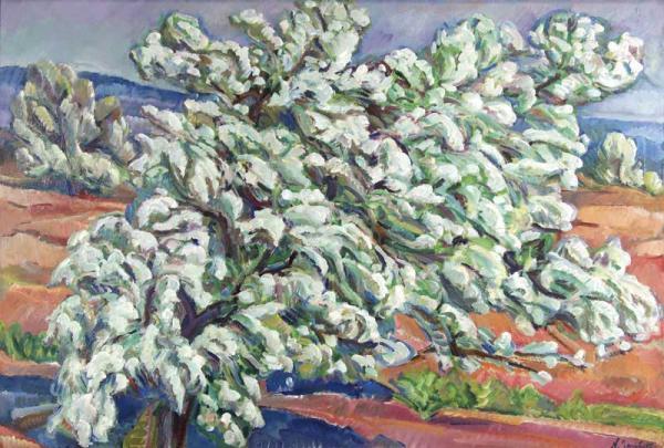 Тархов Н.А. Груша в цвету. 1911