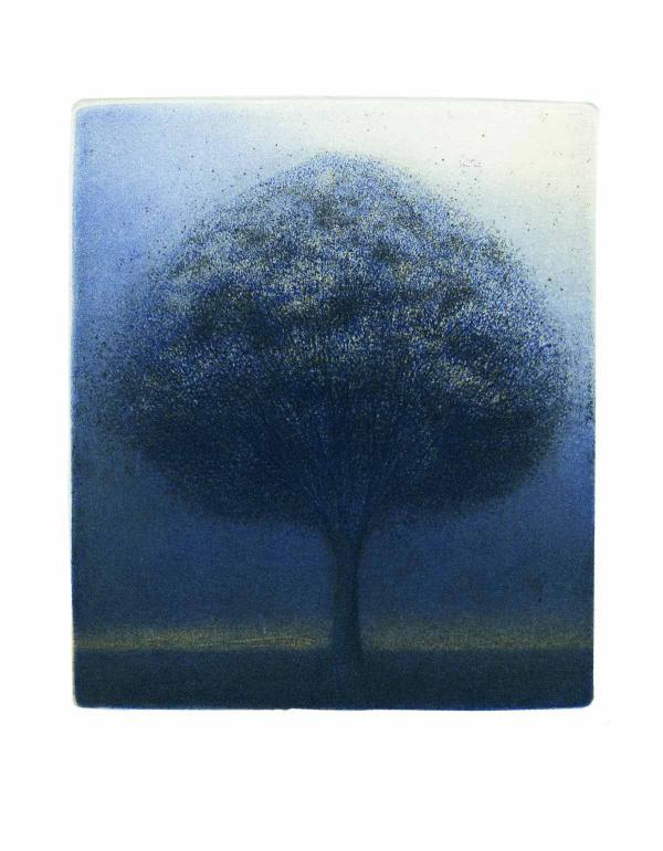 СЛАДЖАНА МАРИНКОВИЧ Маленькое дерево. 2012