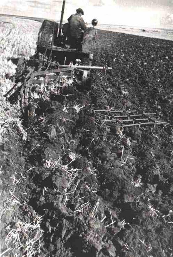 СЕМЕН ФРИДЛЯНД Поднятие зяби на колхозном поле. 1935