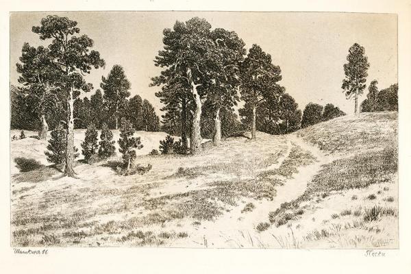 И. И. ШИШКИН Пески. 1886
