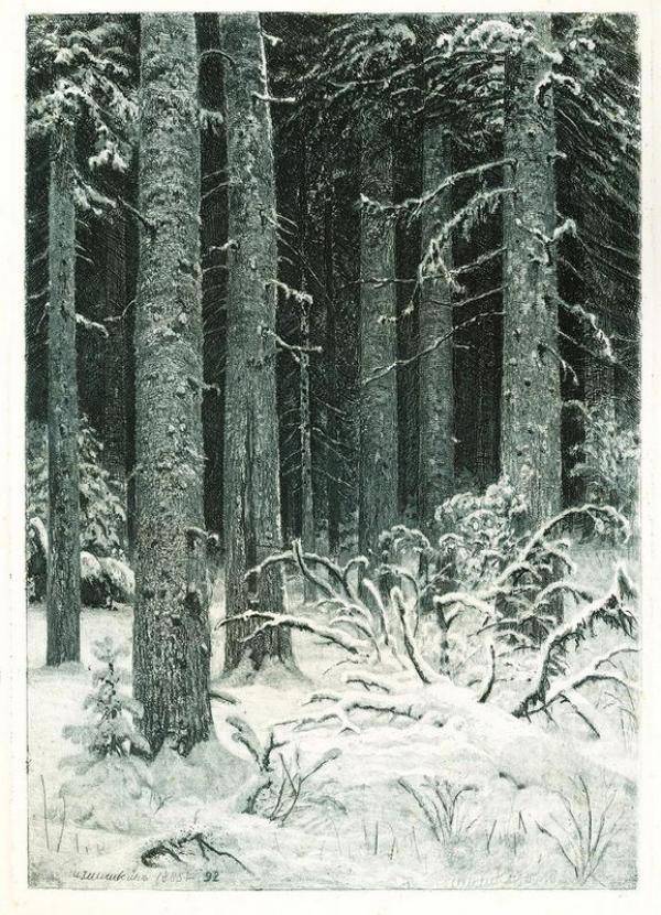 И. И. ШИШКИН Дремучий лес. (Темный лес). 1885