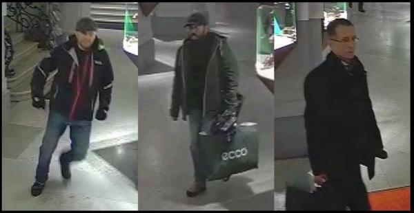 Одного из троих грабителей «Доротеума» схватила голландская полиция